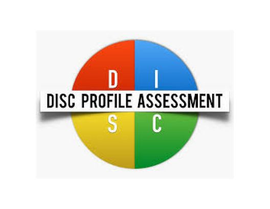 DISC test four quadrants