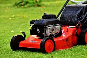 Lawn mower business edger